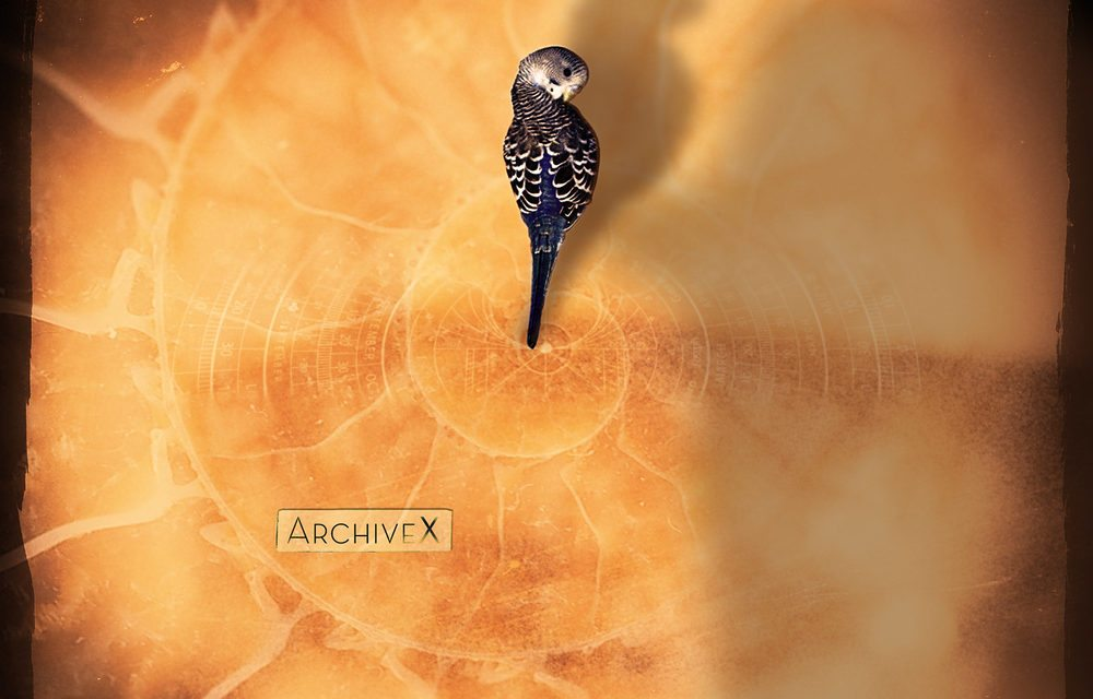 Archive X – Some Ungodly Hour