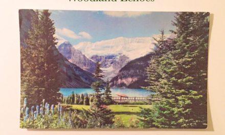Nick Heyward – Woodland Echoes