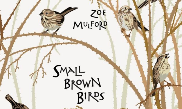 Zoe Mulford – Small Brown Birds